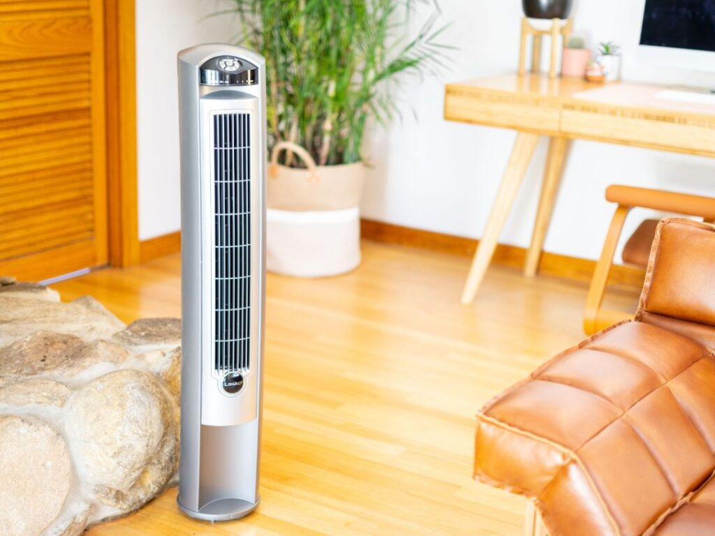 Are Air Purifiers Or Humidifiers Better For Asthma Control