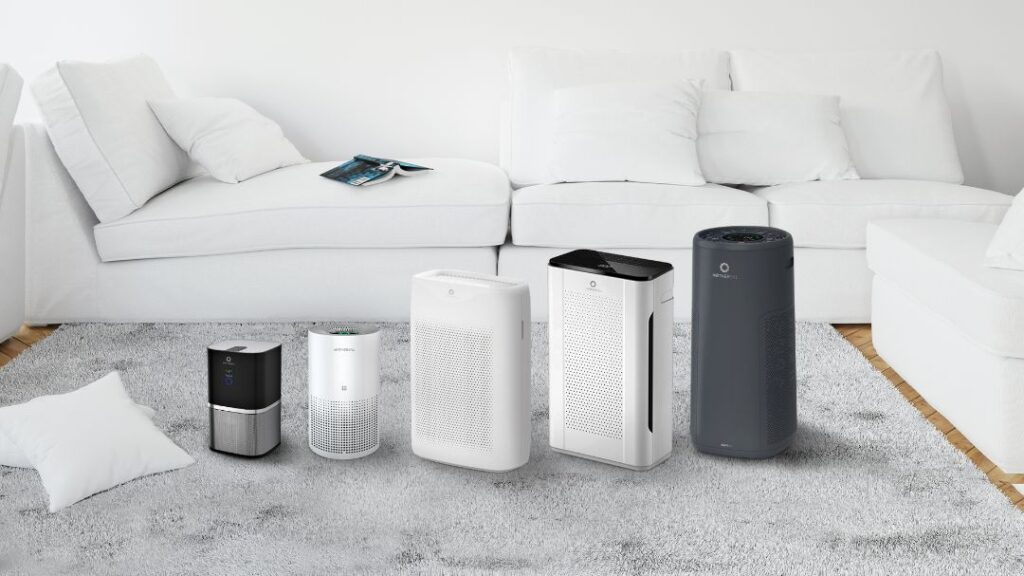 Can I Use a Humidifier & Air Purifier Together