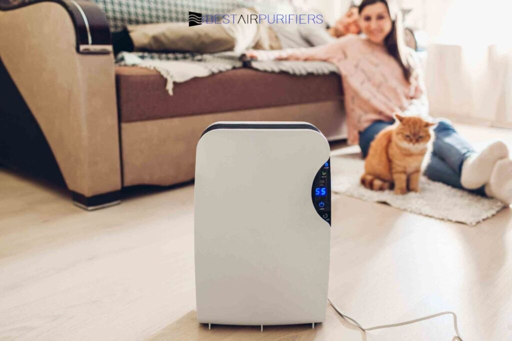 Do Air Purifiers Actively Remove Dust