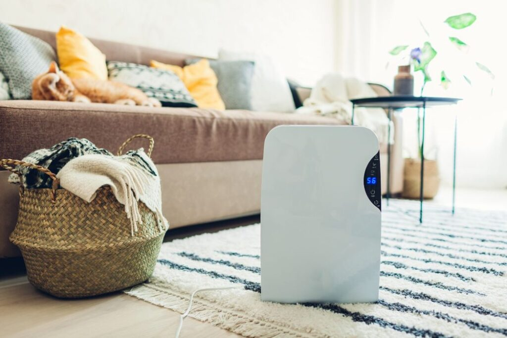 How Does a Carbon Filter In An Air Purifier Work