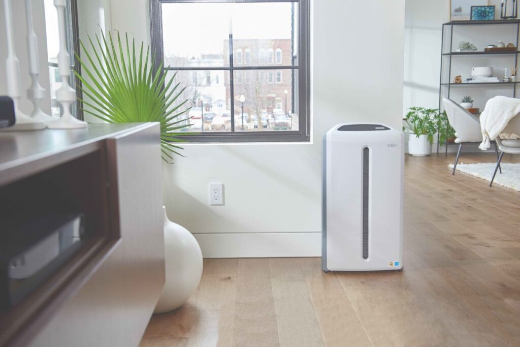 Pros & Cons Of Using an Air Purifier For Asthma