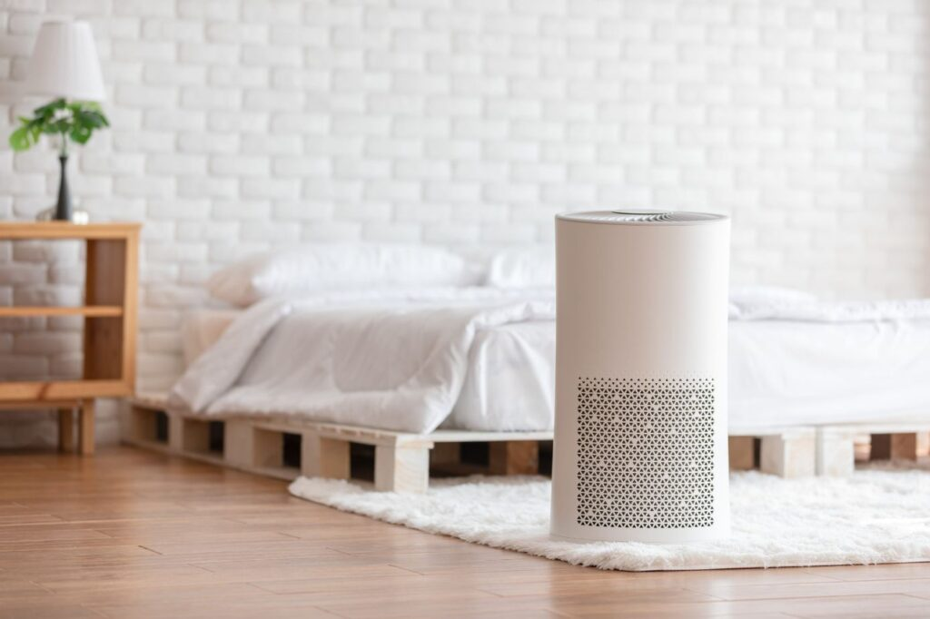Will An Air Purifier Help With My Nasal Congestion